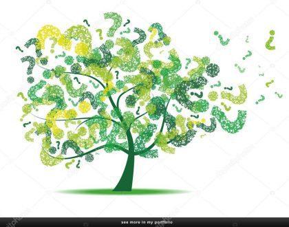 É possível a desconsideração da pessoa jurídica para a reparação de um dano ao meio ambiente?