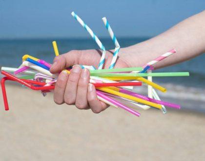 Lei que proíbe canudo plástico em São Francisco do Sul prevê multa de até 6 mil