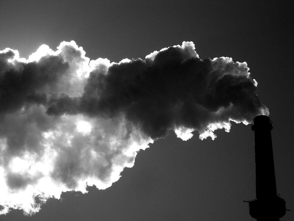 Desconsideração da pessoa jurídica para reparação de dano ao meio ambiente
