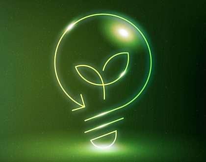 TJSC afasta a aplicação de Lei de São Francisco do Sul que autoriza a ligação de energia elétrica em área de uso consolidado